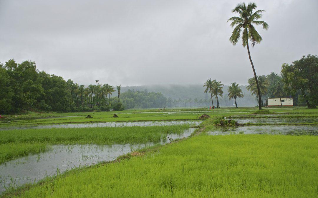 Beautiful Karnataka – 2 best train routes for a bonny travel